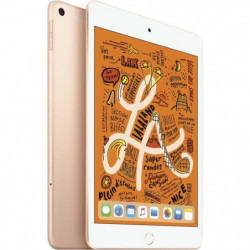 "iPad mini - 7,9"" 64Go WiFi + Cellular - Or"
