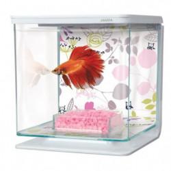 MARINA Kit aquarium équipé Floral pour betta - 2 L