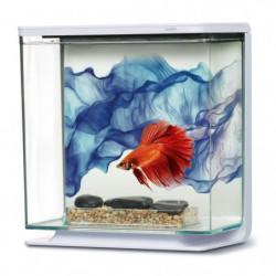 MARINA Kit aquarium équipé Voile Bleu pour betta - 3L