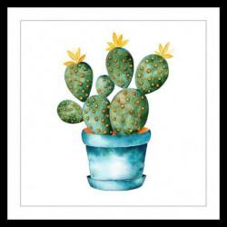 CACTUS Affiche encadrée 50x50cm - Cactus