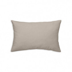 TODAY Coussin déhoussable 100% coton - 30 x 50 cm - Mastic