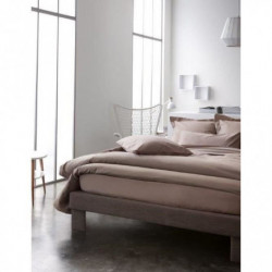 TODAY Drap plat 100% coton - 180x290 cm - Mastic