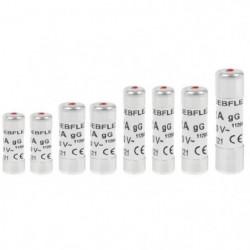DEBFLEX Lot de 8 Fusibles 10 A / 16 A / 20 A / 25 A / 32 A