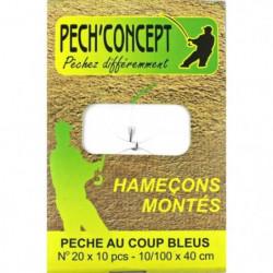 PECH'CONCEPT Carnet de 10 Hameçons Montes N°20