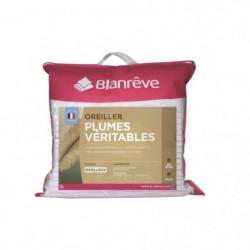 BLANREVE Oreiller Plumes 60x60 cm blanc