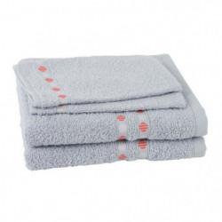 JULES CLARYSSE Lot de 2 serviettes + 2 gants de toilette Lot