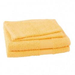 JULES CLARYSSE Lot de 2 serviettes + 2 gants de toilette Viv