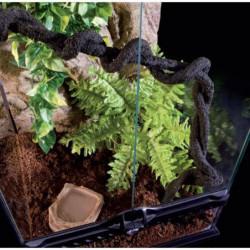 EXO TERRA Terrarium foret pluviale équipé M - Pour reptile o