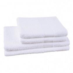 JULES CLARYSSE Lot de 2 serviettes + 2 draps de bain Viva