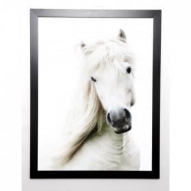 BLONDE ATTITUDE Image encadrée Crin Blanc 57x77 cm