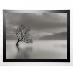 BRAUN STUDIO Image encadrée L'arbre du lac 57x77 cm