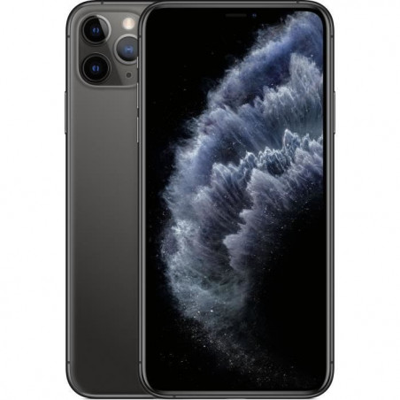 APPLE iPhone 11 Pro Max Gris sidéral 512 Go