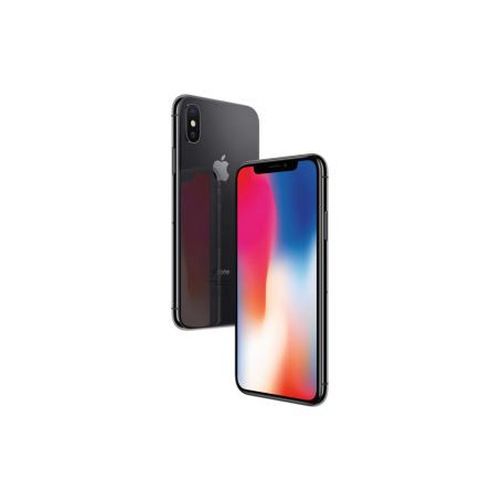 Apple iPhone X 256 Go Gris sideral - Grade B