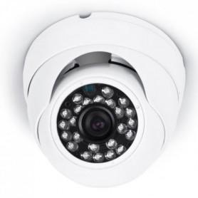 Caméra de surveillance dôme DVR721C HD 720 pixels