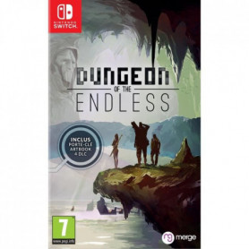 Dungeon of the Endless Jeu Nintendo Switch