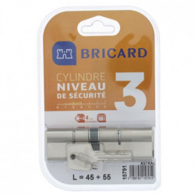 BRICARD ASTRAL 15791 Cylindre 45+55 double entrée